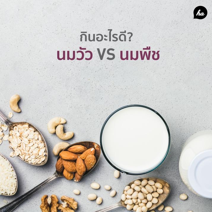 นมวัว VS นมพืช คุณคิดว่าดื่มอะไร เวิร์คกว่ากัน !